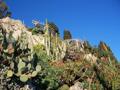 Jardin Exotique et Grottes de l'Observatoire